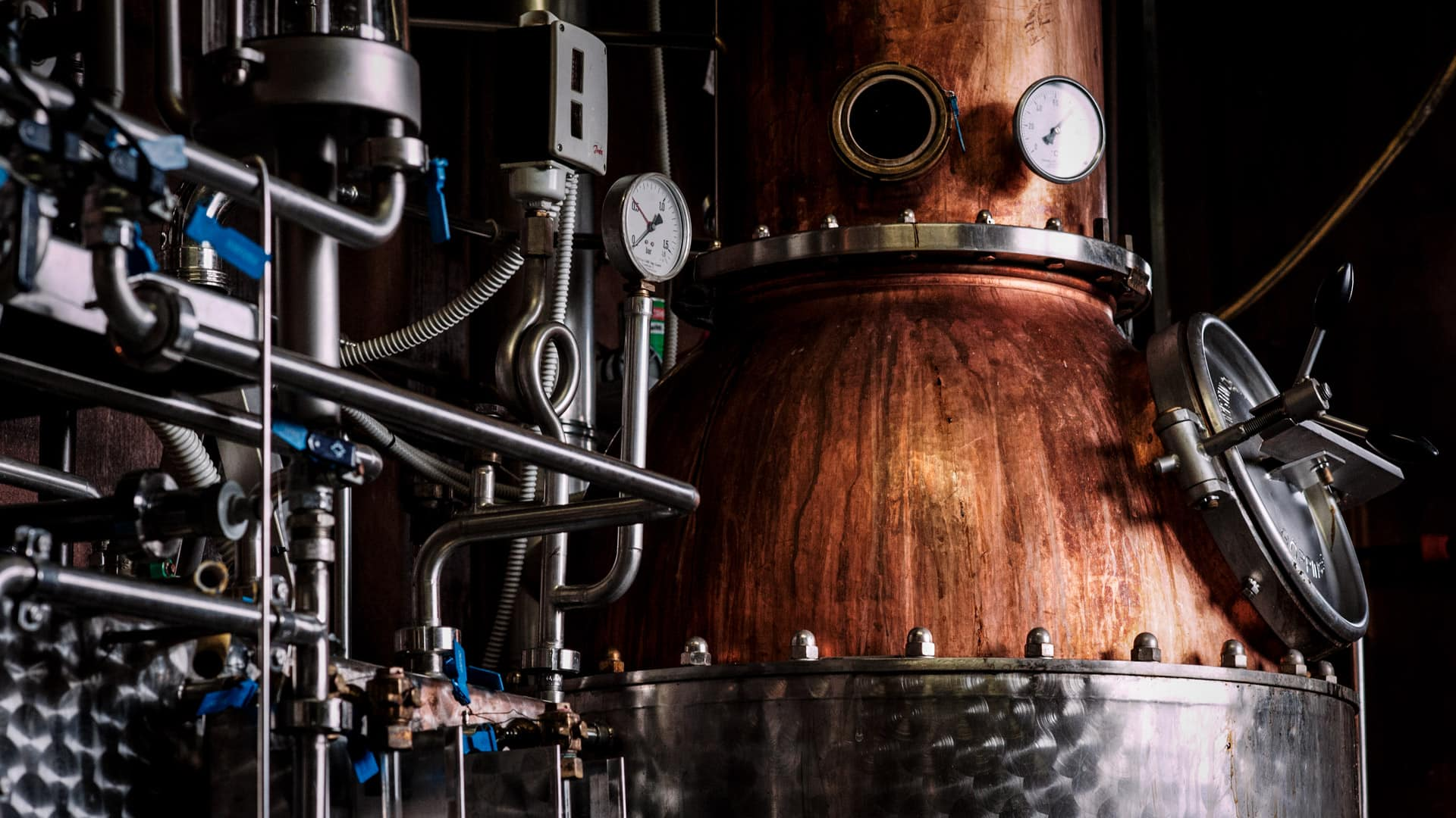 Distillati delle Dolomiti